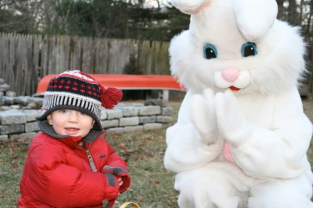 bunny-smiles2.jpg