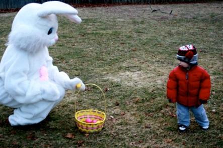 funny-bunny2.jpg