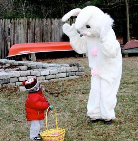 funny-bunny4.jpg